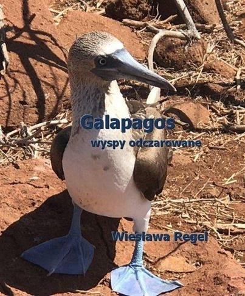 Galapagos - wyspy odczarowane